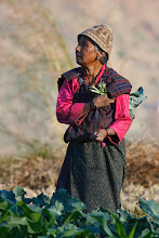 Photo: Woman tending to her crops. Taken on the road to Punakha, Bhutan.