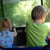 Kindjes aan het stuur!