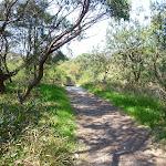 Track near La Perouse (309095)