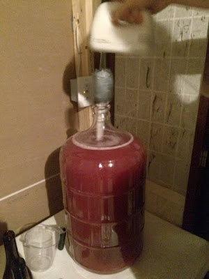 Wine Whip Alternative for Degassing Wine