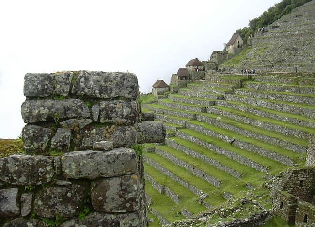 andenes de cultivos en Machu Picchu