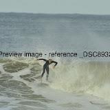 _DSC8932.JPG