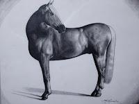 09 Grafikai alkotásokon lovak láthatóak.jpg