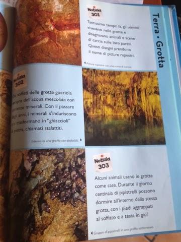 libro disney