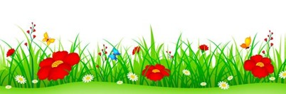 spring-flowers-grass-header-green-cute-colorful-illustration-isolated-white-background-can-use-as-web-site-footer-banner-39007762