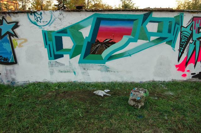 DSC_3117