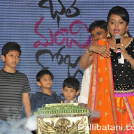 Bhale Manchi Roju Music Launch