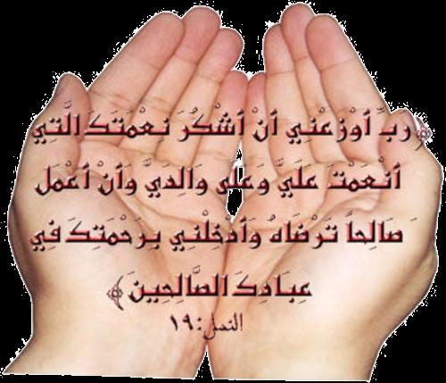 سجدة حمد و شكر فى قلب المحنة