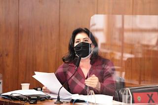 Senadora Simone Tebet aponta falsificação em documento usado pelo governo