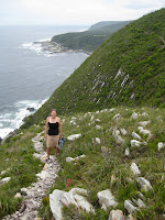 Tsitsikama National Park - Wild Coast, South Africa