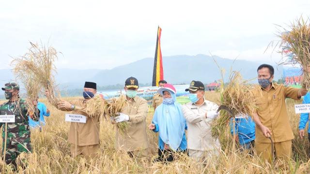Meski Pandemi Covid-19, Kota Solok Mampu Produksi 6,2 Ton Padi Per Hektar