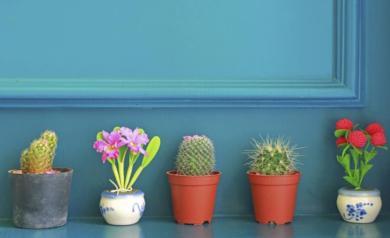 Ideas para decorar tu hogar u oficina con las mejores for Articulos de decoracion para casa