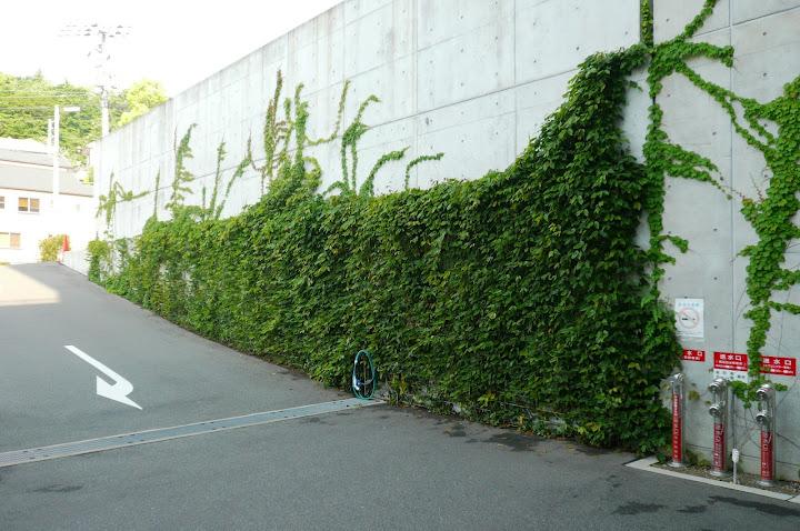 壁面緑化画像