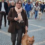 12. April 2016: On Tour in Bayreuth - DSC_0068.JPG