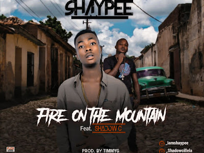 [Music] Shaypee ft Shadow C - Fire on the Montain