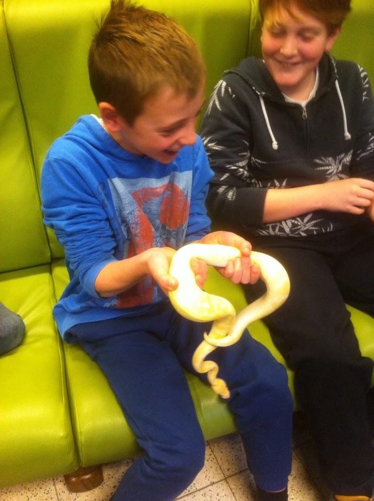 Slangen op bezoek bij de Kikkers - IMG_9223.JPG