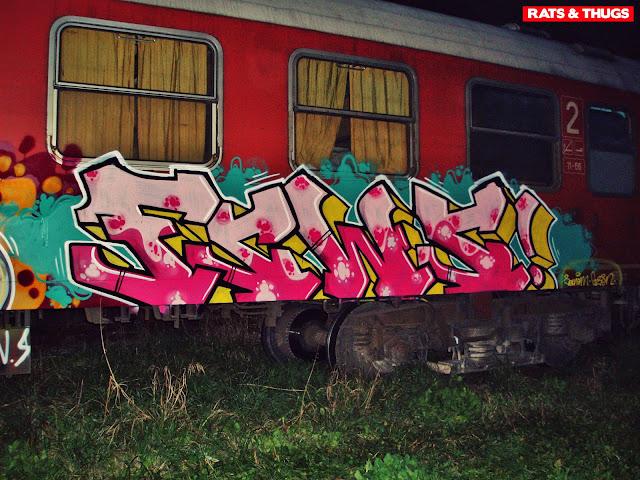 sanem-fsws (2)