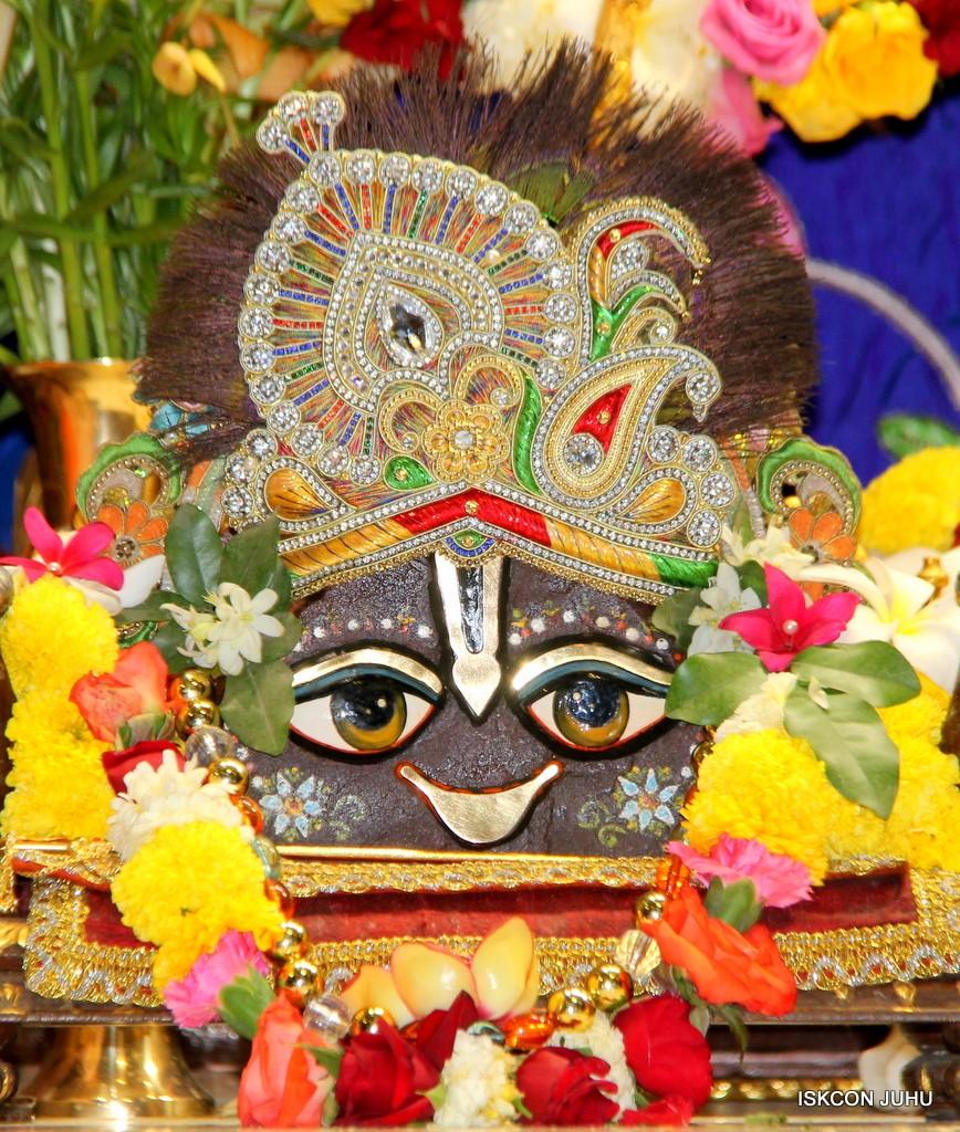 ISKCON Juhu Sringar Deity Darshan 10 Jan 2017 (83)