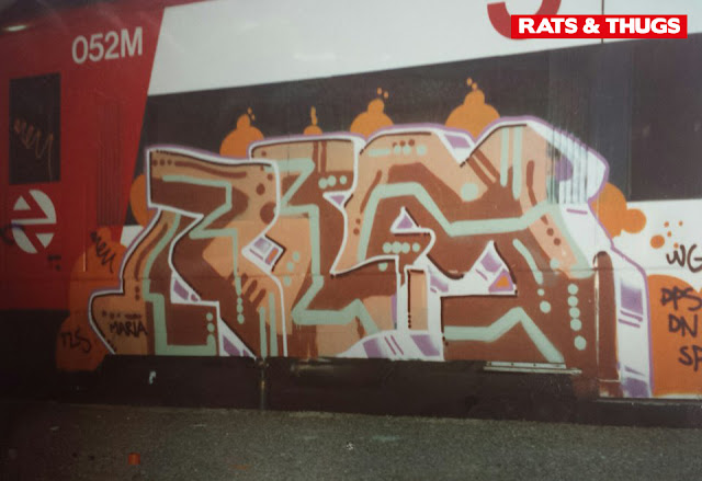 rems (3)