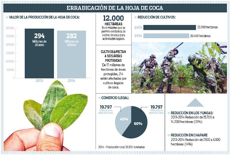Coca en Bolivia