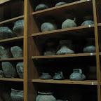 Археологический музей ВГУ 024.jpg