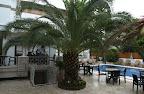 Фото 5 Yildiz Boutique Hotel