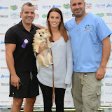 WWW.ENTSIMAGES.COM -      Lucy Watson and Marc Abraham (TV Veterinary Business Development and Coaching Consultant)   at       Pup Aid at Primrose Hill, London September 6th 2014Puppy Parade and fun dog show to raise awareness of the UK's cruel puppy farming trade. Pup Aid, the anti-puppy farming campaign started by TV Vet Marc Abraham, are calling on all animal lovers to contact their MP to support the debate on the sale of puppies and kittens in pet shops. Puppies & Celebrities Return To Fun Dog Show Fighting Cruel Puppy Farming Industry.                                              Photo Mobis Photos/OIC 0203 174 1069