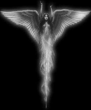 Beauty Of Angel, Angels 5
