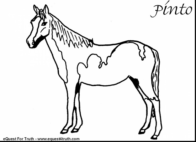 Beautiful Horse Coloring Pages On Carousel Animals Simple With Horse  Coloring Pages And Horse Coloring Pages
