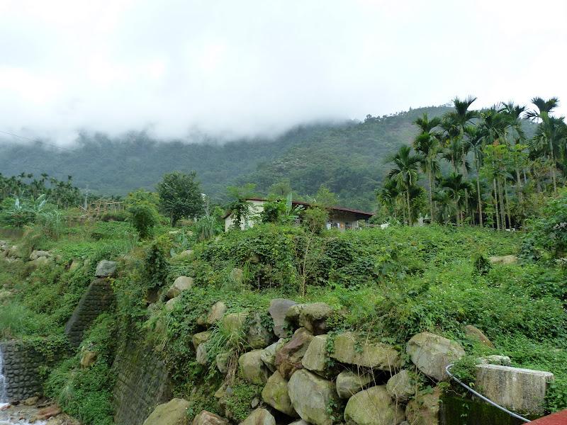 PULI . De Puli a Sun Moon Lake et un village Thao .J 6 - P1150844.JPG