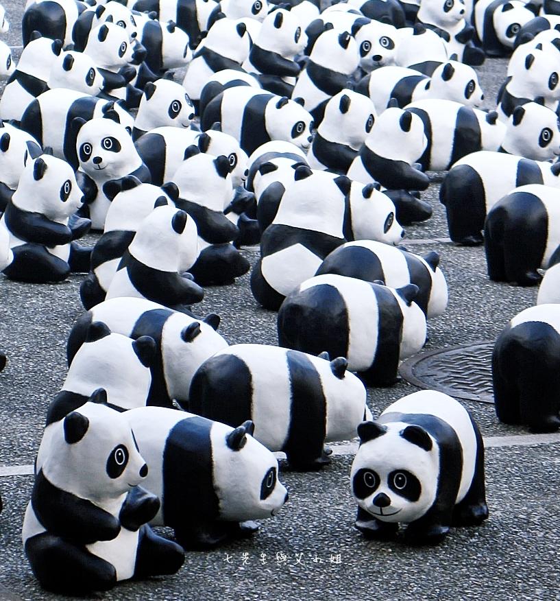 6 紙貓熊 1600貓熊之旅