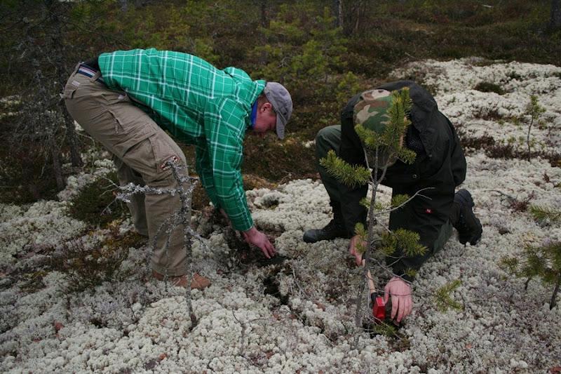 Kallioperägeologian kenttäkurssi, kevät 2012 - Kallioper%25C3%25A4kenttis%2B038.JPG