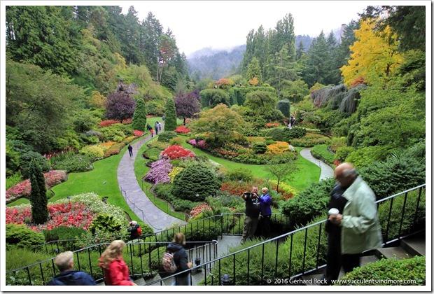 160906_Butchart_Gardens_0043