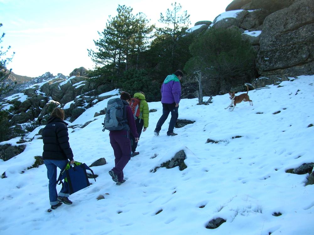 2011 · La Pedriza, disfrutando de la nieve