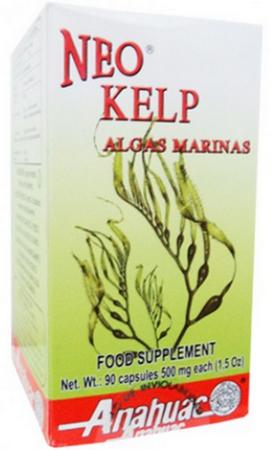 Kelp, Algas Marinas