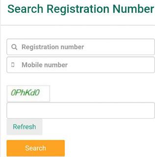 UDISE + Registration Form Status