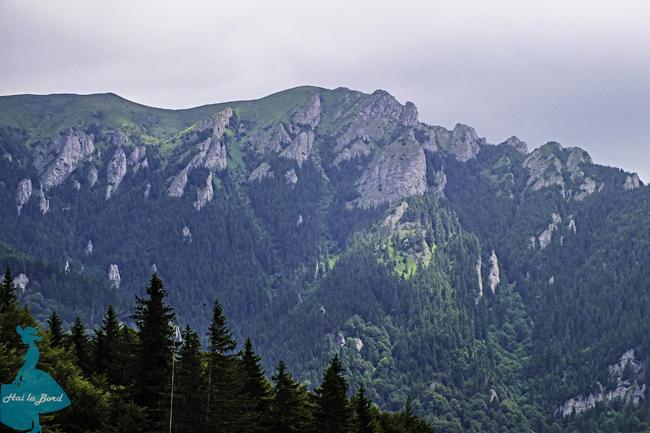 gropsoarele vedere muntele rosu