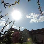 2015.04.21.,Klasztor w Ostrzeszowie, fot.s.A (92).JPG