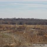 01-19-13 Hagerman Wildlife Preserve and Denison Dam - IMGP4111.JPG