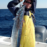 Highspeed Wahoo with Roger.jpg