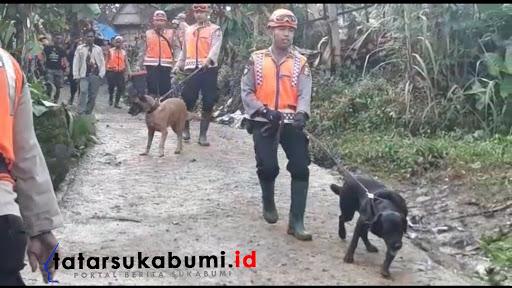 Tim Khusus K-9 Mabes Polri dan Polda Jabar sisir lokasi longsor Cisolok Sukabumi / Foto : Isep Panji