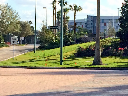 Universal Orlando Cabana Bay pedestrian bridge