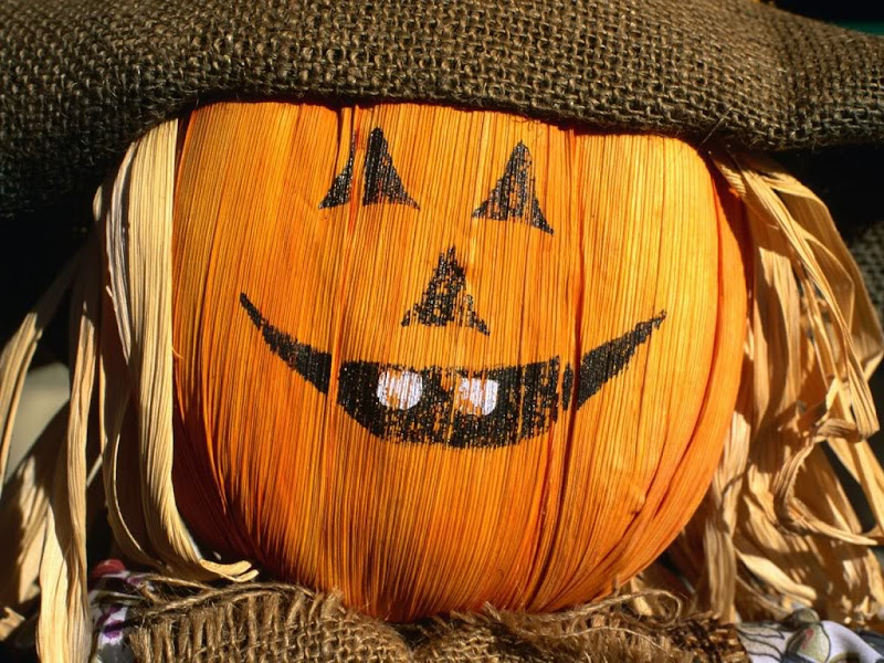 Funny Halloween Pumpkin, Halloween