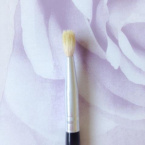 Blank-Canvas-E10-Small-Socket-Blender