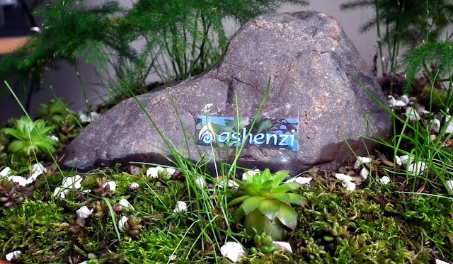 Ashenzi firm's logo as rock_mountain banner in saikei with asparagus ferns
