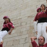 Mostra de la Cultura Popular de Lleida 26-04-14 - IMG_0070.JPG
