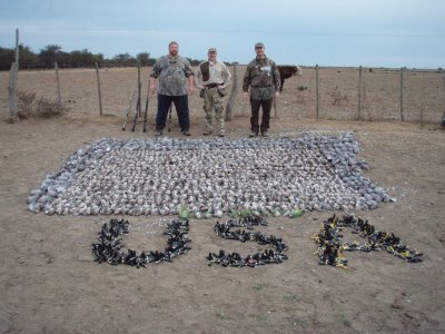 US Hunters With Dead Doves