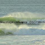 _DSC7386.thumb.jpg