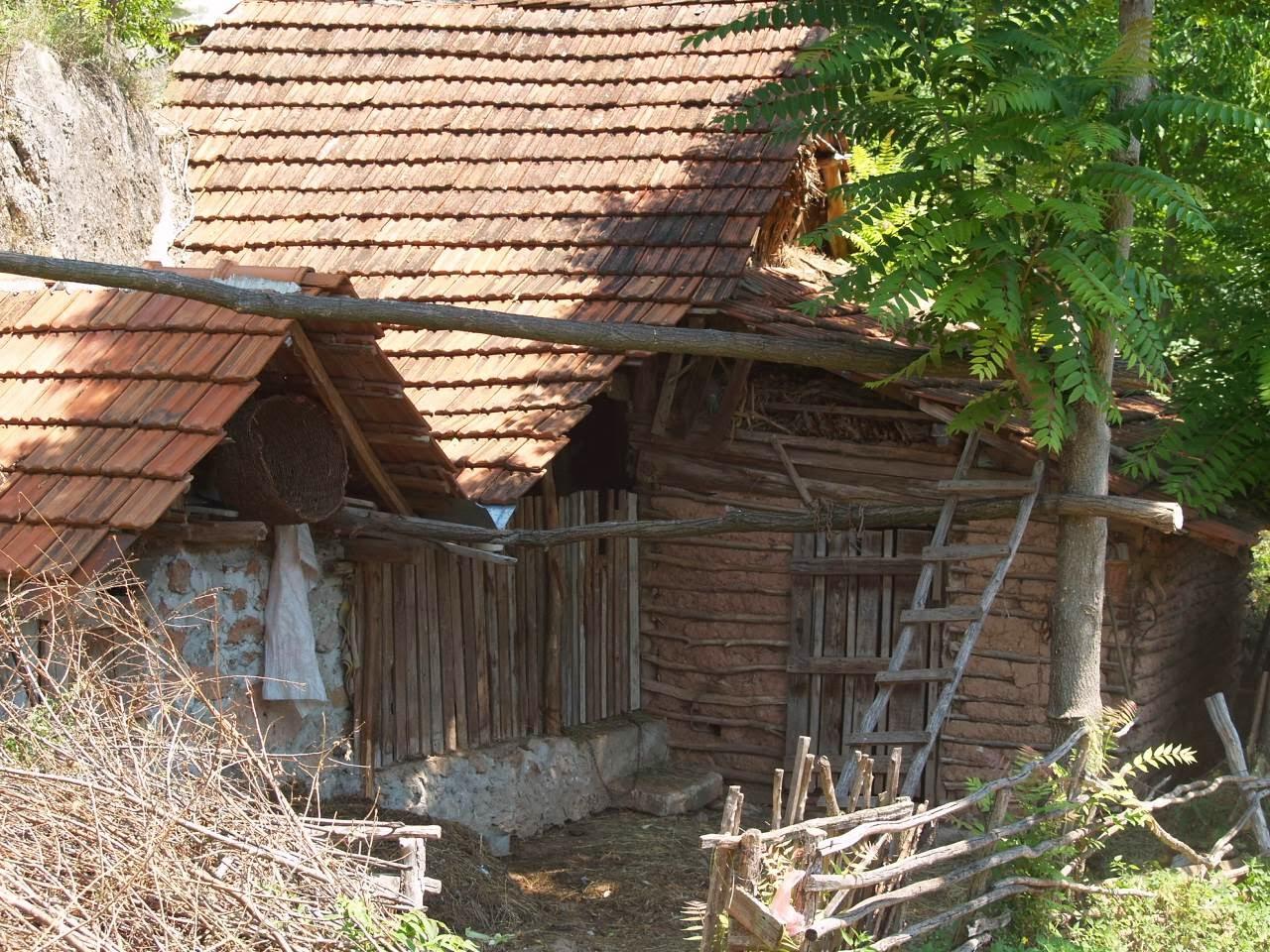 Smotra, Smotra 2006 - P0231224.JPG
