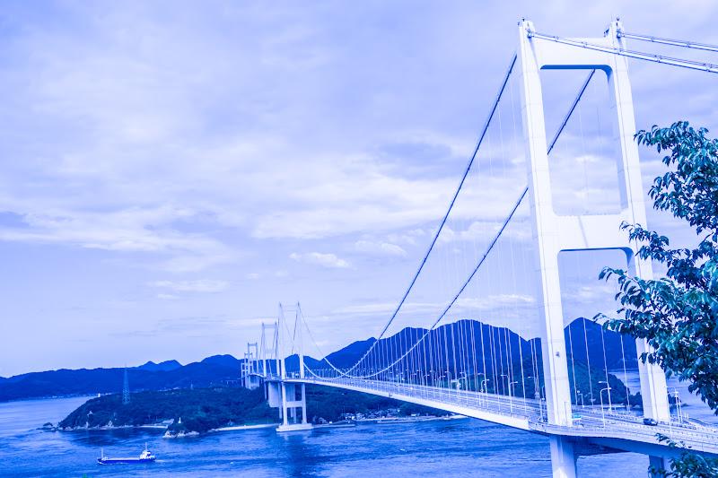 来島海峡大橋 糸山公園展望台 4